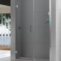 Framless Shower Door & Panel